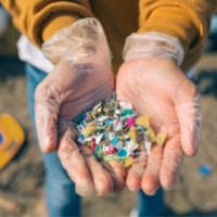 Appello dell'OMS: servono dati sulle microplastiche