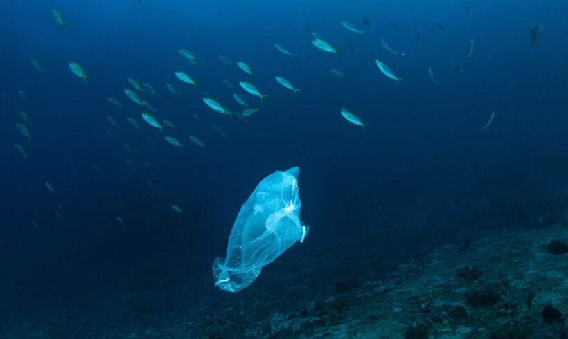 Una ricerca australiana lancia l'allarme: 14 milioni di tonnellate di plastica sotto l'oceano