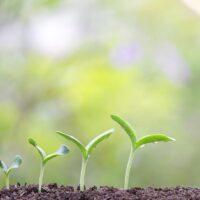 États generaux de la Green Economy 2020